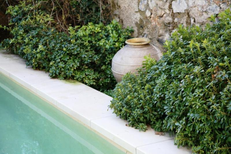 Apartment in Nizas, Pezenas, Languedoc, France - Image 1 - Nizas - rentals