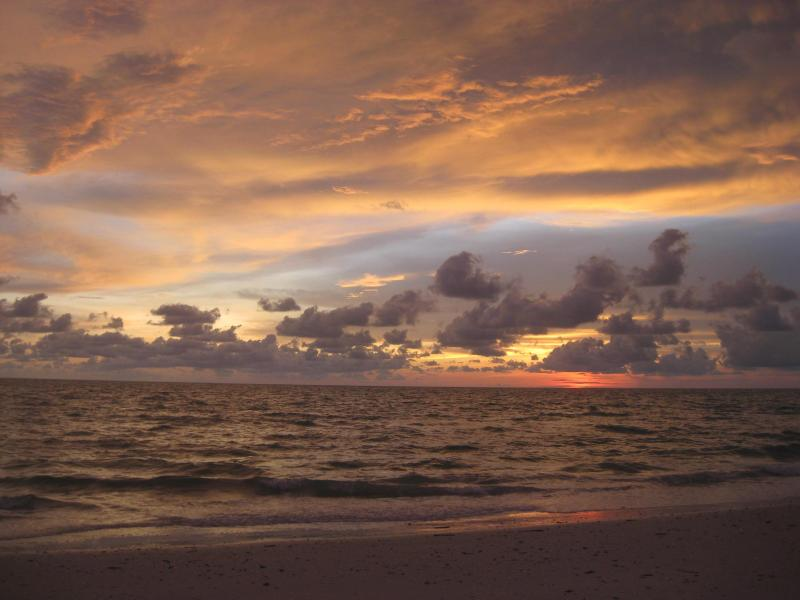 Sunset at Barefoot Beach - Serene & Attractive Pool Home Near Gulf Beaches - Estero - rentals