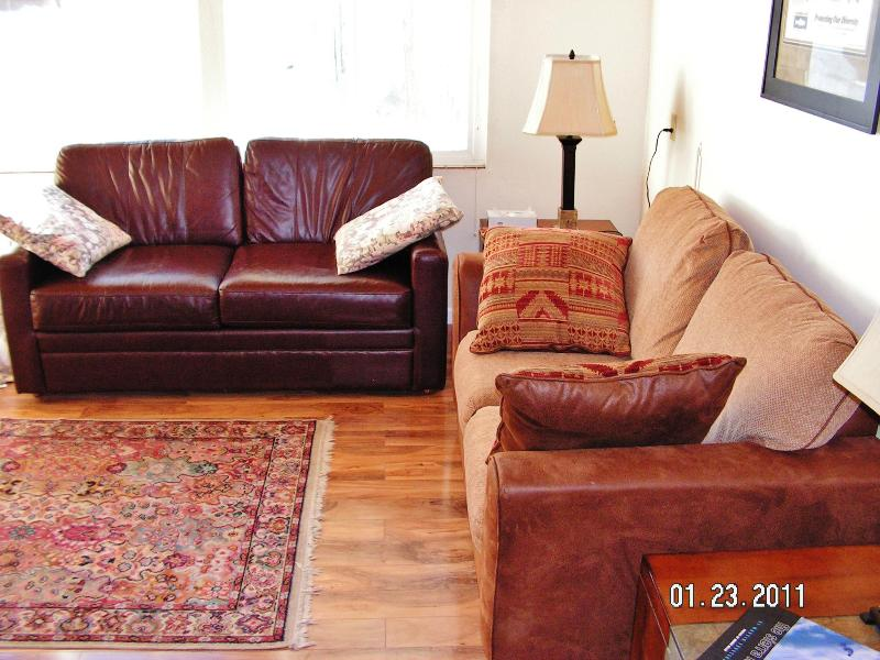Living room - We're open this weekend and Snow is Great! - Mammoth Lakes - rentals