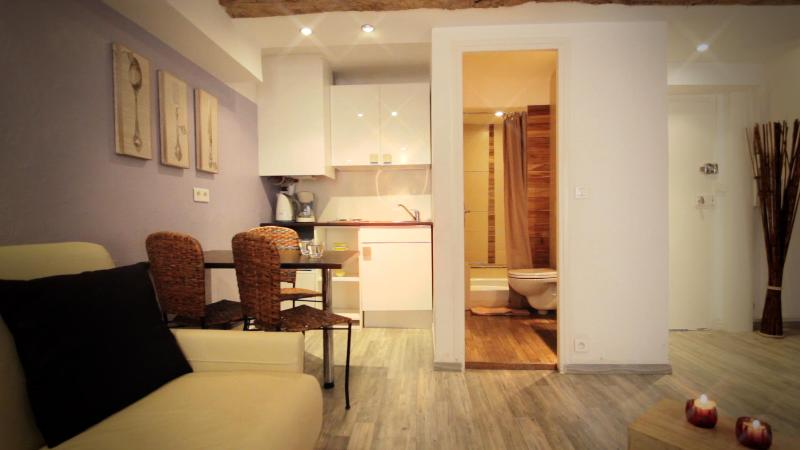 Amazing Cannes Studio Close to Palais des Festivals - Image 1 - Cannes - rentals