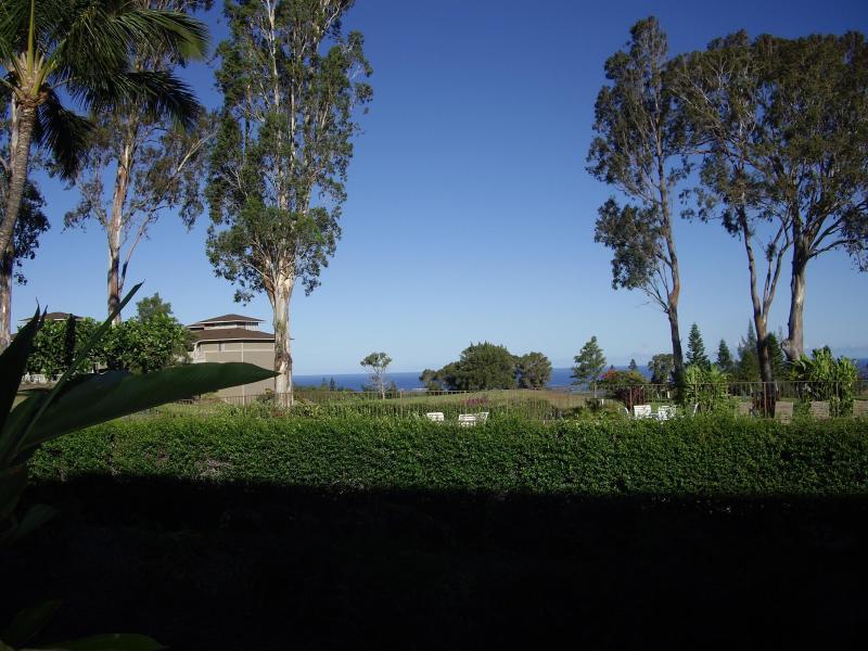 Pool, Golf course, Ocean - Ocean View, Discount Golf, Clean, Central located - Waikoloa - rentals