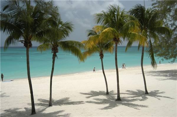 Casa Caribe #11 - Image 1 - Grand Cayman - rentals