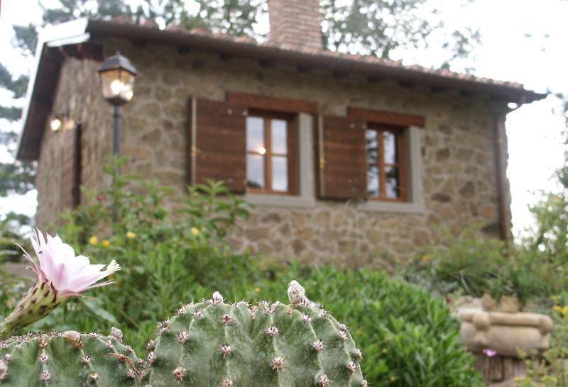 Cottage Il Poggiolino - Cottage Il Poggiolino - Loro Ciuffenna - rentals