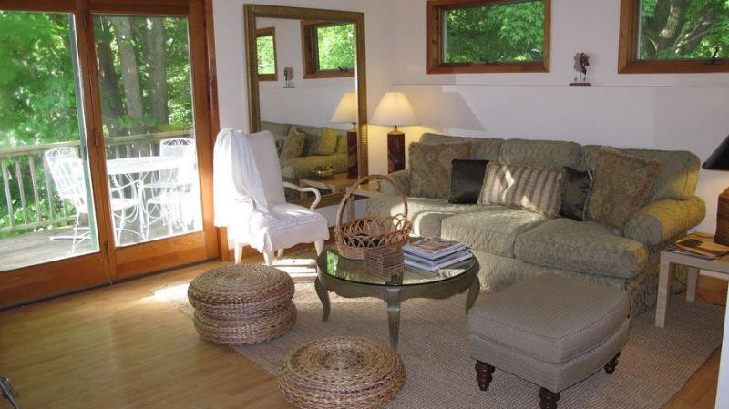 Living Room leads to outdoor deck for summer Dining/Reading/Relaxing - Catskill Ski / Wedding / Vacation-VERY CLEAN - Andes - rentals