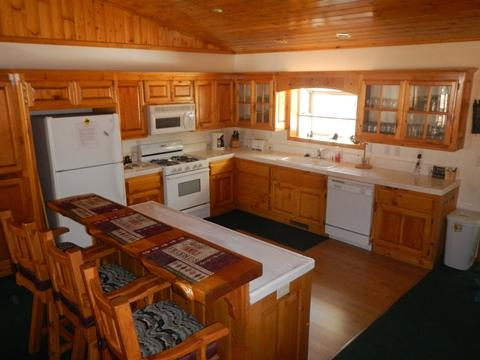 #091 Mockingbird Lodge - Image 1 - Big Bear Lake - rentals