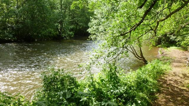 Garden bordering river with BBQs and picnic tables - Gîte for 10 people super woodland and river views - Sansac de Marmiesse - rentals