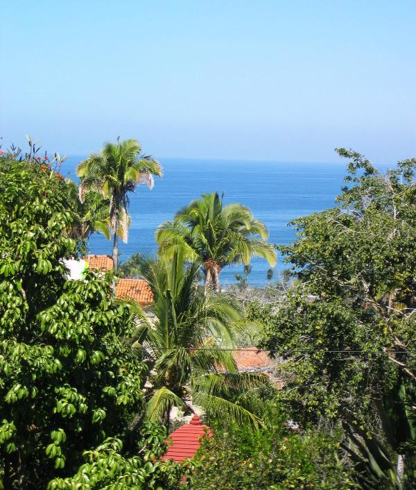 Casa Paz ocean view - Beautiful ocean views, nestled in the tree tops - Sayulita - rentals