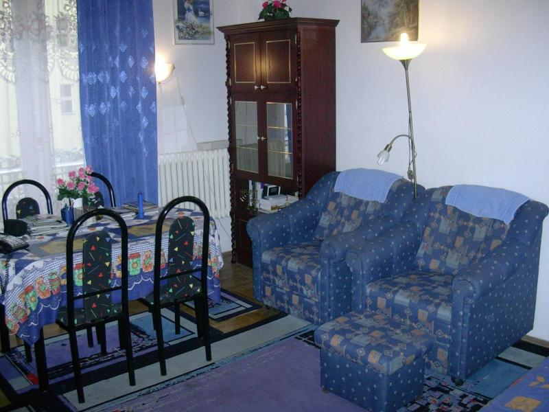 living room - Asboth Apartment - Budapest - rentals