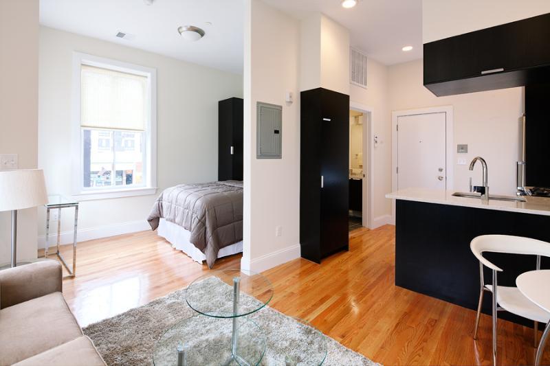 South End Boston Furnished Studio - 784 Tremont Street Unit 2 - Image 1 - Boston - rentals