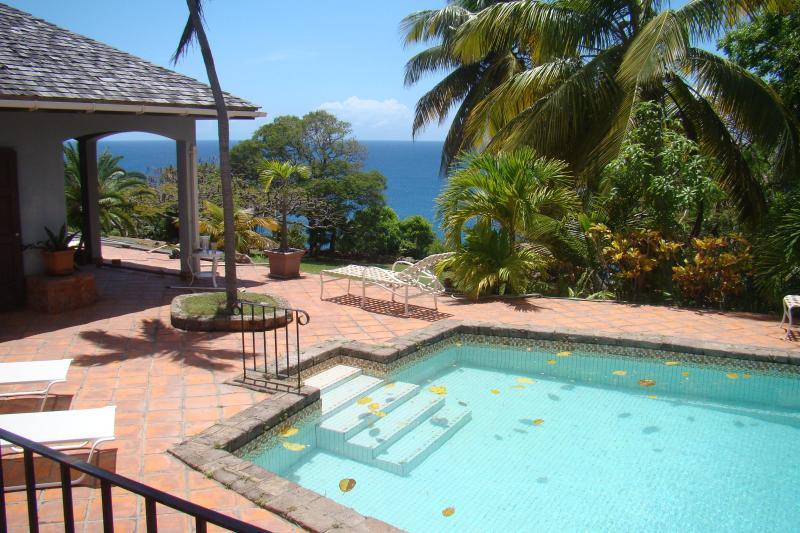 Enjoy Alta Loma's Expansive Pool and Outdoor Space. - Luxury Beachfront Villa in Montserrat  West Indies - Montserrat - rentals