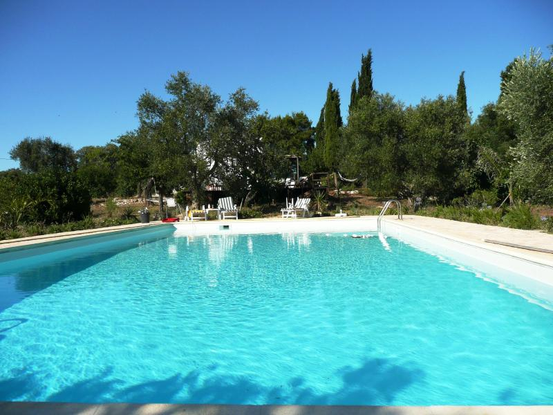 Private salt water pool 14m x 7.5m : a pool for real swimming - TRULLISSIMO  Huge Pool, Great views, Privacy, WiFi - Ceglie Messapica - rentals