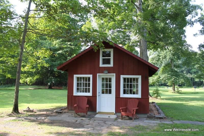 Thoreau's Cozy Cabin by the River - Thoreau's Cozy Little Cabin by the River - Taberg - rentals