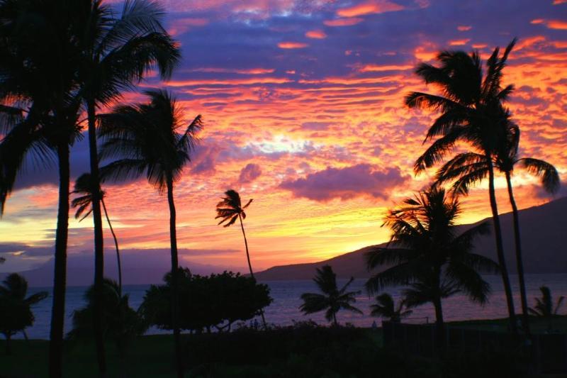 Sunset from property - Beautiful Ocean Front/View 2 bedroom condo resort - Kihei - rentals