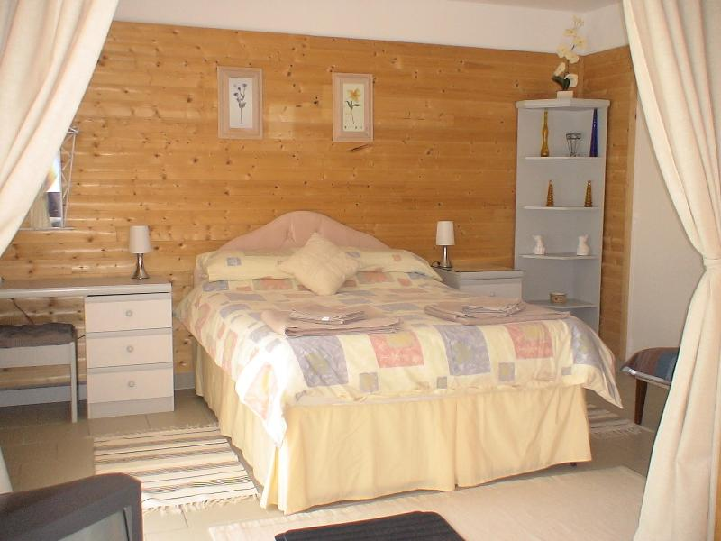 Main Bedroom - Studio 'La Cistude' - Chemille Sur Indrois - rentals