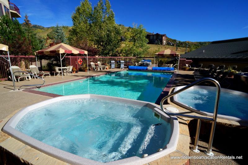 Torian Plum #303 - 2Bd/2Ba - Image 1 - Steamboat Springs - rentals