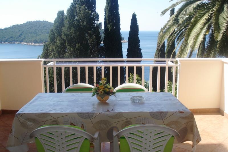balcony - APARTMENT SEA VIEW IN DUBROVNIK - Dubrovnik - rentals