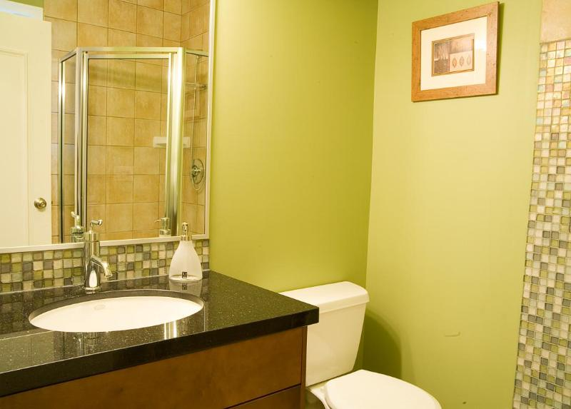 House i - Central downtown Vancouver - Image 1 - Vancouver - rentals