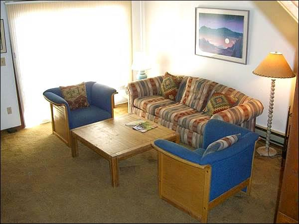 Sunny Living Room Includes a Sleeper Sofa and Wood-Burning Fireplace - Spacious, Three-Story Townhome - Close to the Shuttle Stop (1275) - Crested Butte - rentals