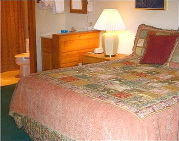Queen Bed in the Bedroom - Perfect Condo for a Couple - Quality Accommodations (1287) - Crested Butte - rentals