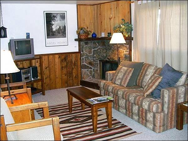 Fireplace, Sleeper Sofa, TV, and Stereo in the Living Room - Three Seasons Condo with Mountain Views - Perfect for 2-3 Couples (1331) - Crested Butte - rentals
