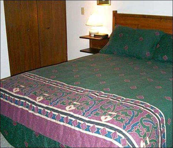 Queen Bed in the Bedroom - Comfortable & Affordable Accommodations - Ideal for a Couple or a Single Traveler (1332) - Crested Butte - rentals