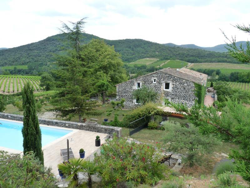 Mas du Tilleul and its pool - Mas du Tilleul-family suite-B&Bs - Saint-Thome - rentals