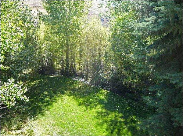 Forest Views - Mountain Views - Newly Remodeled (1017) - Ketchum - rentals