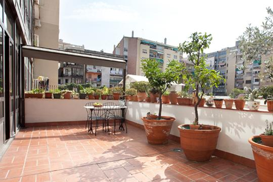 Citrus ** Cocoon Central Families (BARCELONA) - Image 1 - Barcelona - rentals