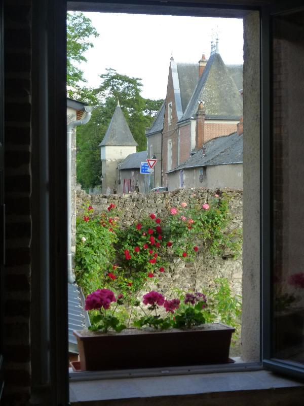 vue sur le clos lucé de la cuisine - Au coeur des chateaux  Le Balcon De Leonard - Amboise - rentals