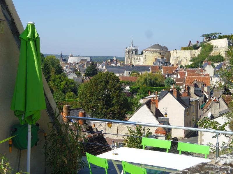 vue de la terrasse sur le chateau - Au coeur des chateaux  Le Balcon De Leonard - Amboise - rentals