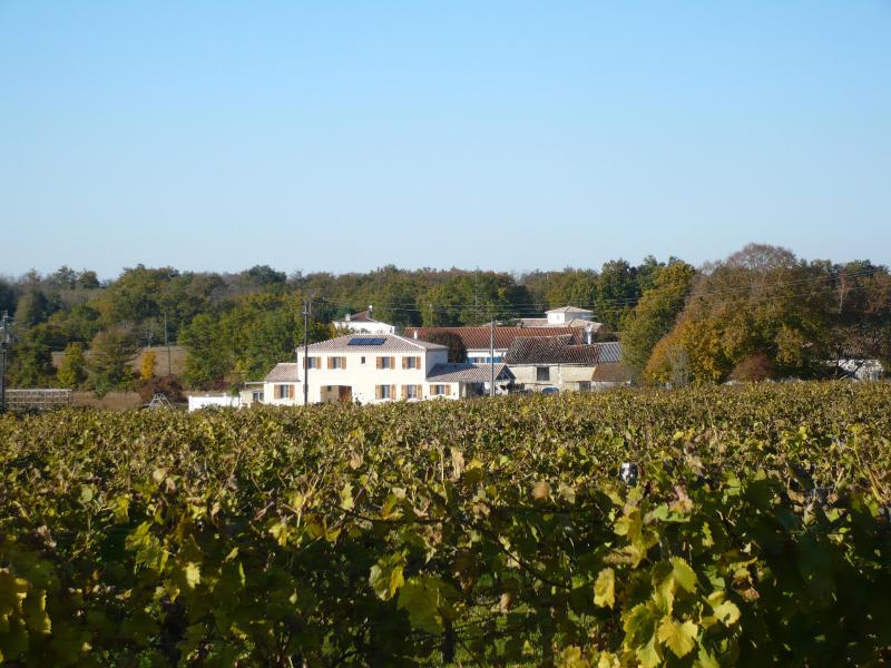 Front aspect of property showing vineyards opposite - Maison Vignes - Fleac sur Seugne - rentals