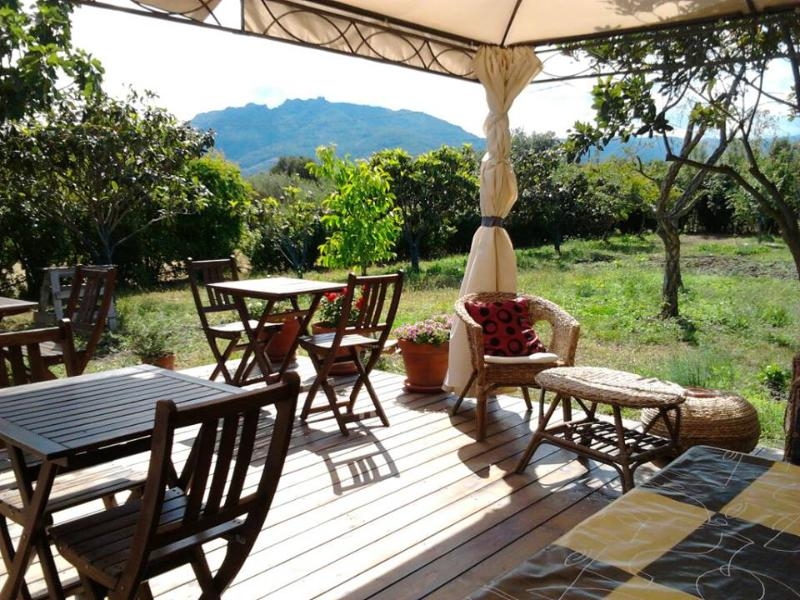 wood deck in the garden - B&B Fiore - Room 4 - Pula - rentals
