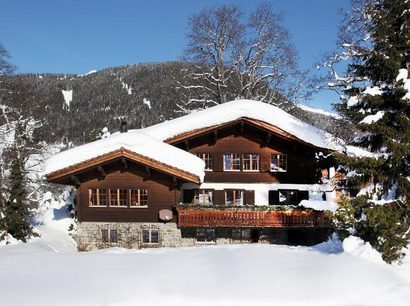 Chalet  Marmot - Image 1 - Klosters - rentals