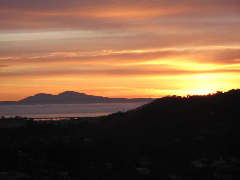 View from the kitchen and dining deck - Amazing Private Estate, Organic Beauty Living - Novato - rentals