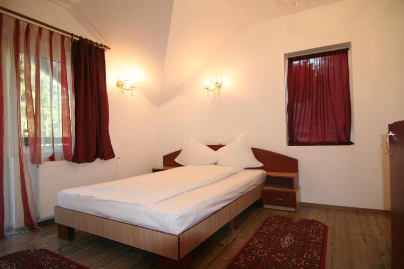 Villa Balbi - Image 1 - Sinaia - rentals