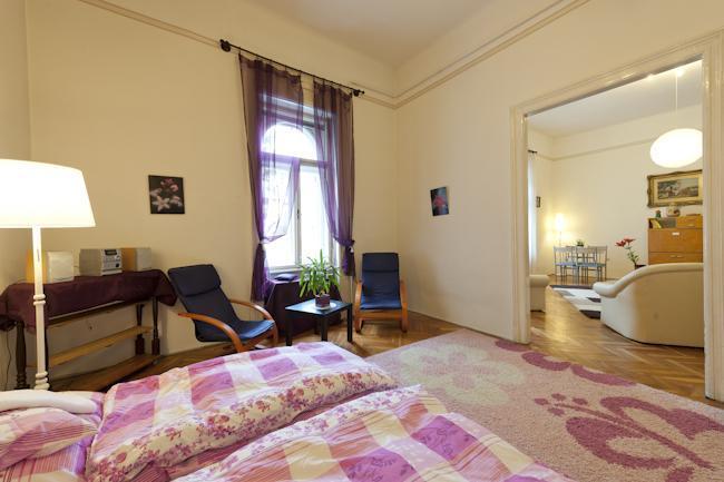Viktoria Apartment, free WIFI - Image 1 - Budapest - rentals