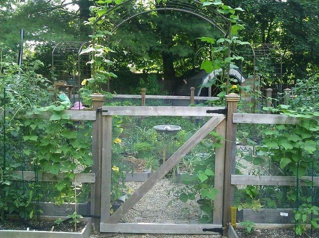 garden - 4 BR Medford Square - Medford - rentals
