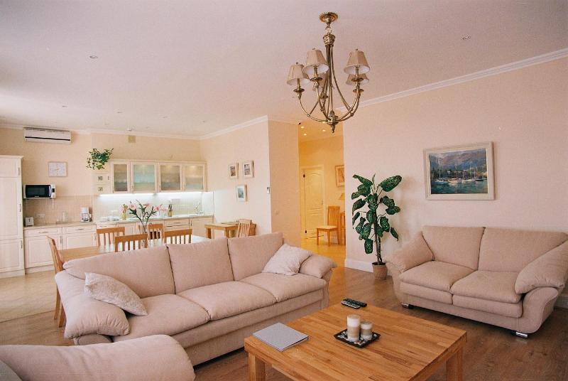 Irish apartments in Kharkiv.  High class european standard apartment. Rent short or long term. - The Best apartment for rent in Kharkov! - Kharkiv - rentals
