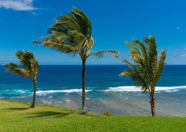 Your view from the lanai! - Sealodge G4: Spectacular oceanfront views from upgraded romantic hideaway - Princeville - rentals