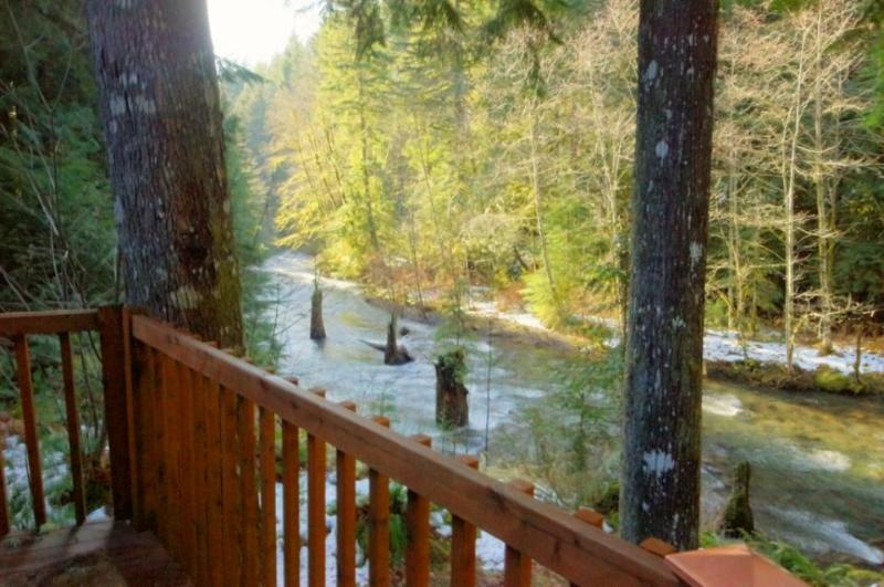 Clear Creek Cabin - Image 1 - Rhododendron - rentals