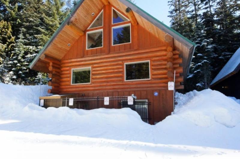 Big Bear Cabin and Little Bear Cabin - Image 1 - Government Camp - rentals