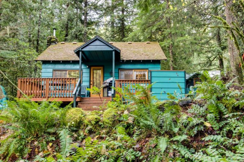 Huckleberry Haven - Image 1 - Rhododendron - rentals