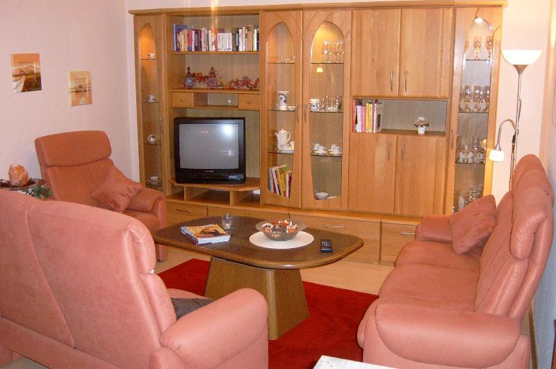 living room with cable tv - Ferienwohnung Rheinsehen - Germany - rentals