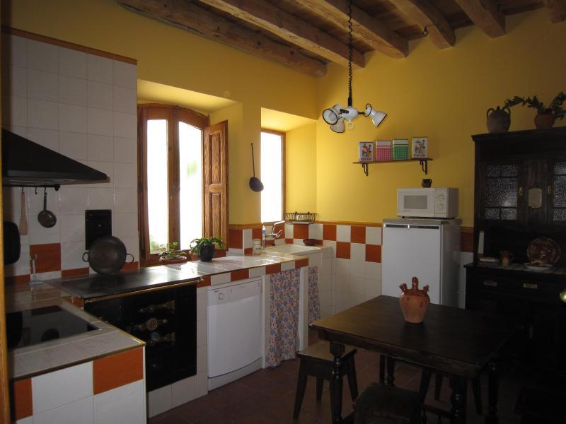 La Cantina de Daniel - Image 1 - Sahagun - rentals