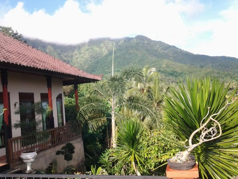view - jof home stay - Singaraja - rentals