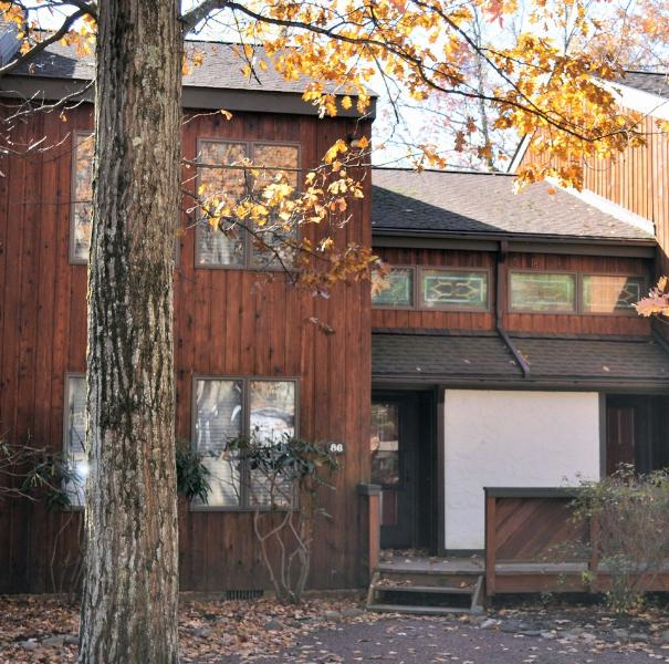 BH91 - Image 1 - Lake Harmony - rentals