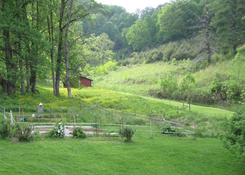 View from front porch door of veg. garden - Tender Mercy Retreat - Waynesville - rentals