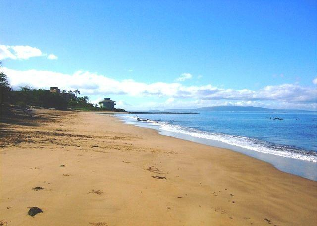 Long Sandy Beach Across From Kihei Bay Surf - Kihei Bay Surf #238 Renovated, SUMMER SPECIAL $75 / NIGHT! - Kihei - rentals