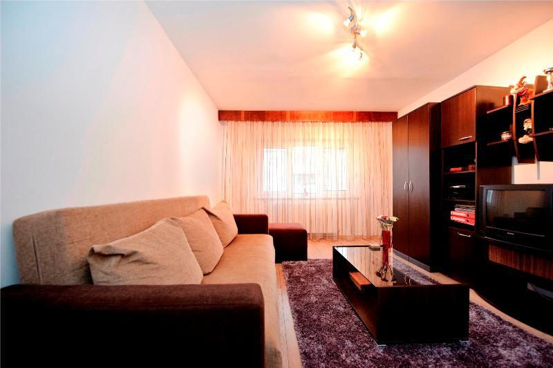 Nice apart. for 2-4 guests - Brasov - Image 1 - Brasov - rentals