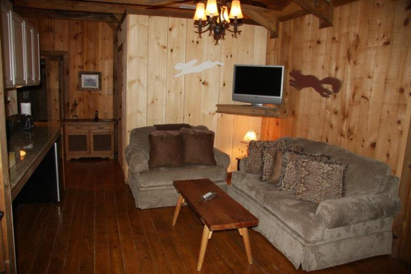 Kitchenette/lounge area - Hillsborough B&B - Purcellville - rentals